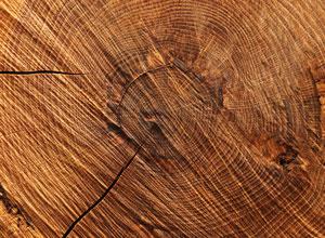 Bushmills Madeira Holznoten